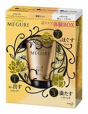 New kao ASIENCE MEGURI experience BOX RESET 145g  japan