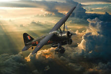 More details for lysander  canvas prints various sizes free delivery