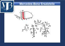 Mercedes-Benz W123 C123 Coupé Dichtung Heckfenster, Frontfenster