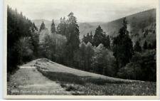 """""""Dicke Tannen"""" Bäume Harz Abhang Wolfsbachtal um 1945"""