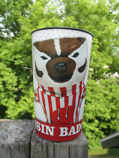 Wisconsin Badgers Bucky Badger Plastic Cup University Mascot Dynamic Football
