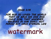 BIBLE VERSE SCRIPTURE JOHN 3:16 FOR GOD SO LOVED THE WORLD THAT HE GAVE PHOTO
