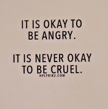 IT IS OKAY TO BE ANGRY. IT IS NEVER OKAY TO BE CRUEL.  positive love magnet