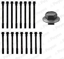 PEUGEOT J5 2.5D Cylinder Head Bolts 81 to 94 Set Kit Payen 0204418x 0204429x New