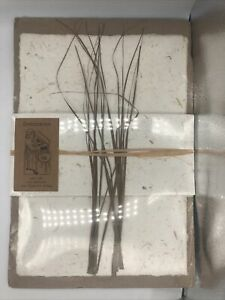New Botanicus Hand Made Writing Set, Paper and Envelopes, Grass, Made in India