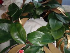 """Pottery Barn Green Gold Magnolia Lit wreath 24"""" New wo tag"""