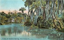 c1907 Postcard; Outlet of Sulphur Spring near Tampa FL Hillsborough County