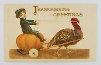 Postcard Thanksgiving Greetings Chariot Boy on Pumpkin being pulled by Turkey