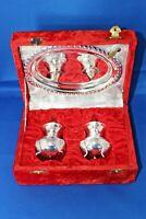 Gorgeous Vintage Silver Plate Cruet Set Salt Pepper Tray in Original Velvet Box