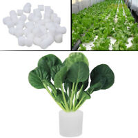 50x Soilless Hydroponic Sponge Seed Start Grow Plant Vegetables Cultivation 30mm