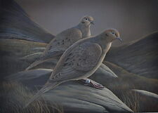 Turtle Doves Art Print artist Doug Walpus Limited Edition Birds Acrylic 11 x 14