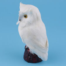 Simulated Owl Bird Model Model Toy Animal Figurine Home Decoration Carfts