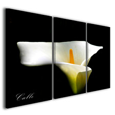 quadri moderni fiori calle in vendita | eBay