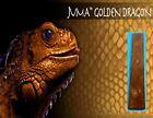 1 Golden Dragon Juma .250' ( 1/4' ) Scale 2' x 12' - Knife Handle Material Blank