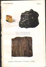 1916 Minerals Print of AMBER - ASPHALTUM - LIGNITE