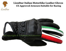 Lionstar Italian Motorbike Motorcycle Leather Racing Gloves CE Approved Armours