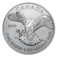 2014 1 oz Silver Canadian Birds of Prey Series - Peregrine Falcon