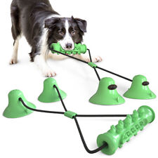 Indestructible Pet Dog Chew Molar Bite Teeth Cleaning Rope Tug Two Suction Cup