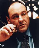 """The Sopranos"" James Gandolfini 5x7 Television Memorabilia HBO"