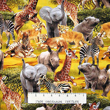 Baby Safari Animal Fabric - Elephant Zebra Lion - Timeless Treasures YARD