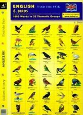 English Find the pair Birds
