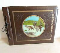 "Vintage Photograph Album 51 p Paper 13.5x10.5"" Deer Embossed Cover FREE SH"