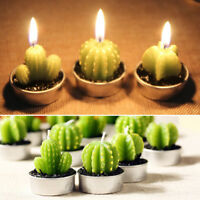 Candle Succulent Plants Potted Plant Scented Candles Romantic Wedding Decoration