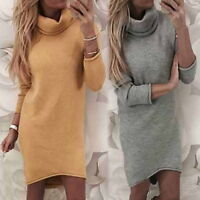 Women Knitted Sweater Dress Long Sleeve Turtleneck Loose Mini Short Winter Dress