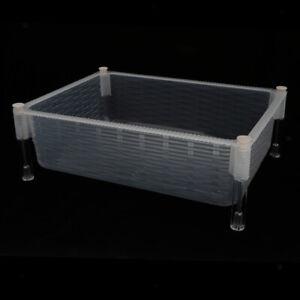 NEW Plastic Aquarium Baby Small   Breeding Box Mini Betta   Tank