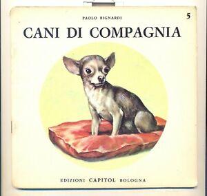 visioni della natura n. 5 : CANI DI COMPAGNIA - capitol bologna - 1968 - ottimo