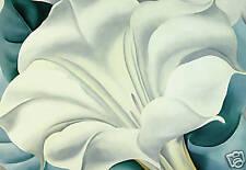 "WHITE FLORAL CANVAS ART PRINT FLOWER PAINTING 30"" x 20"""