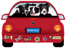 Border Collie-Pupmobile Magnet
