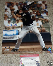 Ryan Braun autographed MLB 16x20 Milwaukee Brewers At Bat photo Hologram COA
