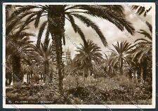 Palermo Foto FG cartolina D9512 SZI