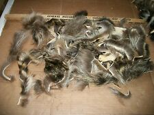 LOT tanned RACCOON  scrap pieces fur pelt skin FLY TYING smaller native craft