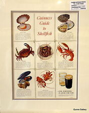 Vintage Advertisement mounted ready to frame 1953 Guiness Guide to Shellfish