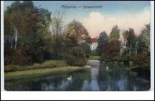 Mittweida Sachsen Postkarte ~1910/20 Partie am Schwanenteich Schwäne