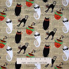 Halloween Fabric - Cheeky Wee Pumpkin Ghost Cat on Story Stripe - Studio E YARD