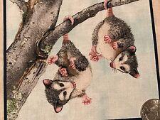 "Fabric Woodland Animals Possum's on Cream Cotton 5"" x 5"" Elizabeth 1"