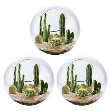 3pcs Globe Glass Ball Planter Vase Flower Plant Pot Terrarium Container Tabletop