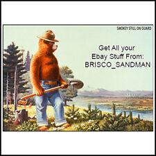 Fridge Fun Refrigerator Magnet SMOKEY THE BEAR Retro AD Poster -Version D-