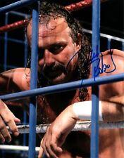 Jake The Snake Roberts Signed 8x10 Wrestling Photo Cage Wwe Wwf Hof Autograph