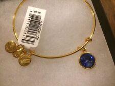NEW Alex and Ani September Birthstone Bangle Bracelet Charm Sapphire Blue Twins