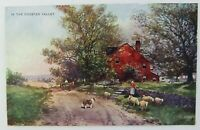 Antique Postcard IN THE CHESTER VALLEY, R Hill, Edw. Stern Phila, #238