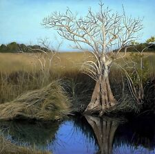 """Original Oil Painting Direct From Artist (Landscape. """"Everglades Reflection"""")"""