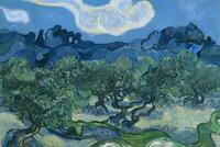 Vincent van Gogh The Olive Trees Art Print Poster 24x36 inch