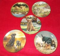 VARIOUS DOG COLLECTORS PLATES PLATES  - SELECT PLATE