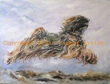 More details for sale tibetan terrier signed dog print by susan harper unmounted