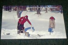 1960's Ice Fishing Greetings from Hertel Wisconsin Vintage Postcard