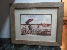 William Rodgers, Jr. Deland, Florida bird landscape print EC rustic framed!